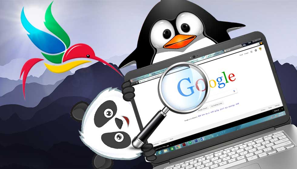 The Complete Guide to Google Search Algorithm – Panda, Penguin and Hummingbird